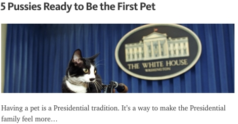 cats white house first pet POTUS